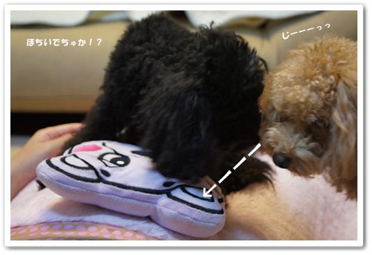 20111106yuzukosyo3.jpg