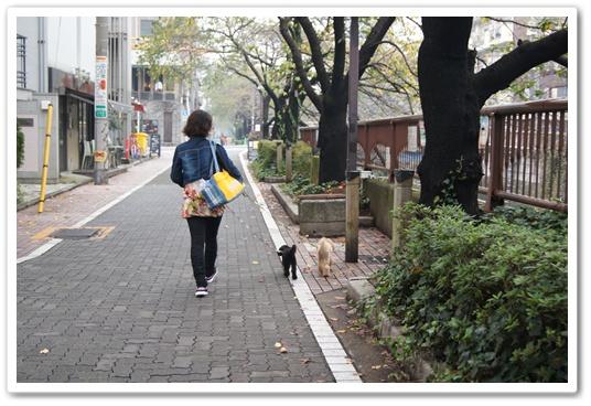20111107yuzukosyo1.jpg