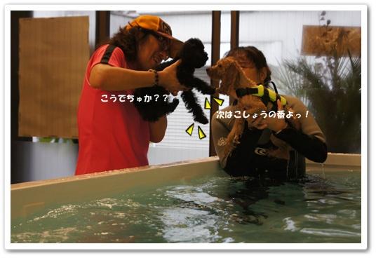 20111107yuzukosyo2.jpg