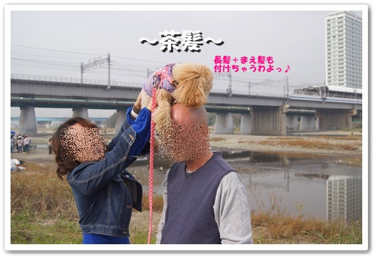 20111116yuzu4k.jpg