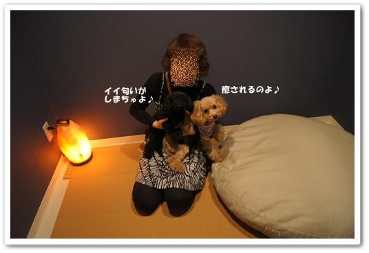 20111129yuzukosyo1.jpg