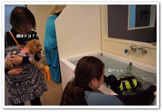 20111129yuzukosyo2.jpg