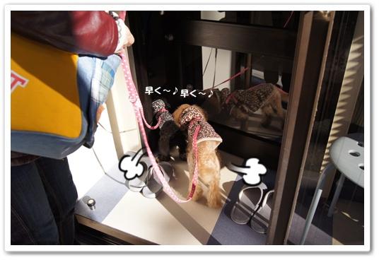 20111209yuzukosyo1.jpg