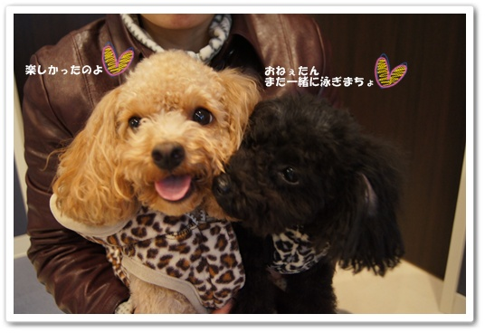 20111209yuzukosyo10.jpg