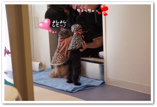 20111209yuzukosyo2.jpg