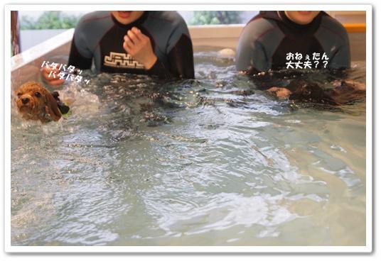 20111209yuzukosyo5.jpg