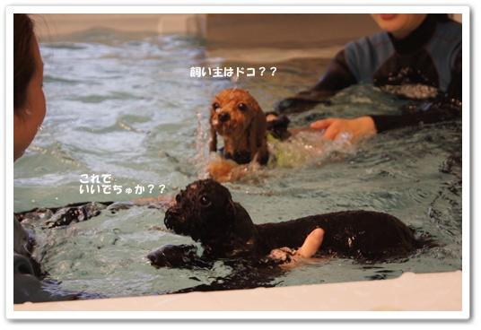 20111209yuzukosyo6.jpg