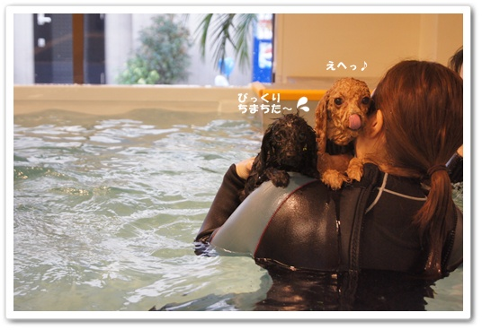 20111209yuzukosyo8.jpg