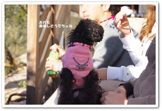 20111214kosyo4.jpg