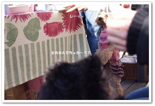 20111214yuzukosyo2.jpg