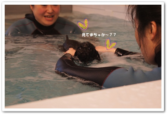 20111227kosyo10.jpg