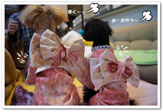 20120102yuzukosyo2.jpg
