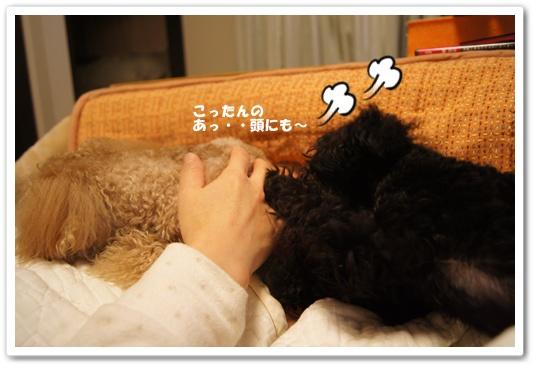 20120228yuzukosyo5.jpg