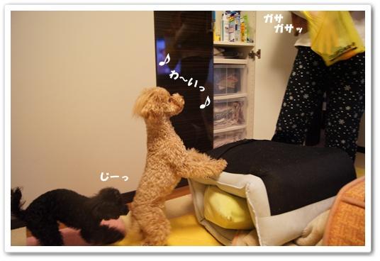 20120229yuzukosyo1.jpg