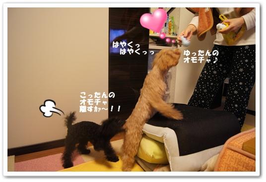 20120229yuzukosyo6.jpg