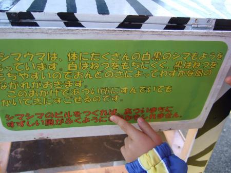 1202120082_convert_20120216071354.jpg