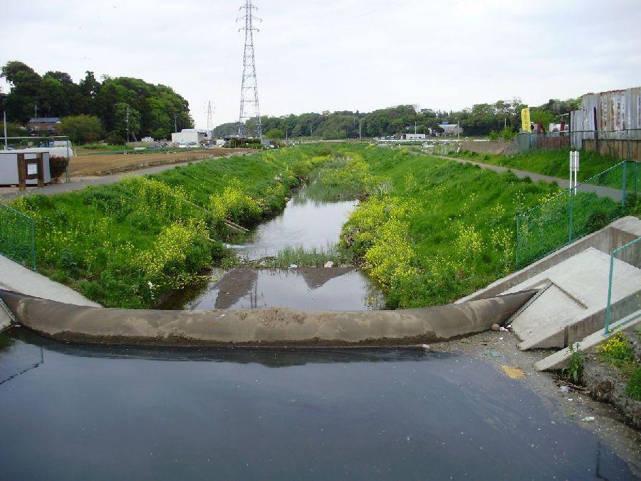 fishing: 坂川放水路と周辺クリ...