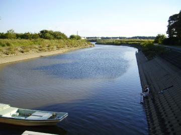 Tone_river_Obori_28.jpg