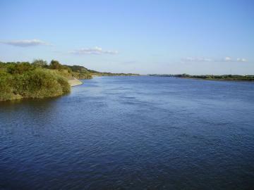Tone_river_Obori_31.jpg