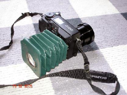 DSC00911.jpg