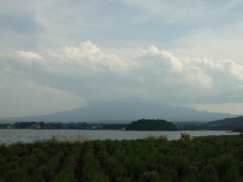 6/14 河口湖からの富士山
