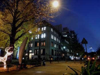 nihonnoodoori_0002.jpg