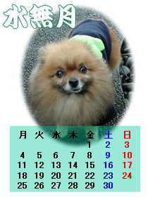 社長カレンダー6-2