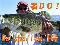 Do Shallow1号