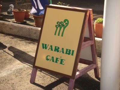 warabi1.jpg
