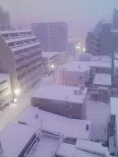 昨日から大雪