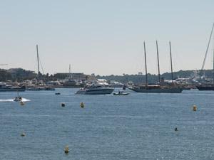 ヨットがいっぱい