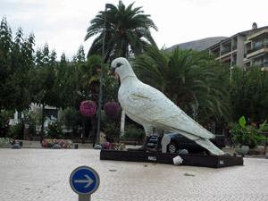 17-pigeon1.jpg