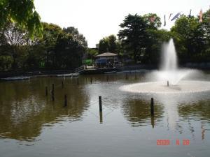 碑文谷公園の弁天池