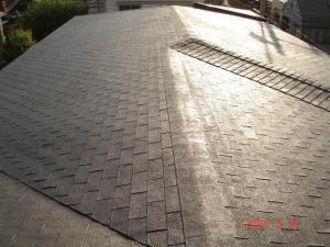 塗装前の屋根(アスファルトシングル)1