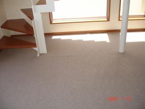 置き敷きカーペット2