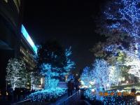クリスマスイルミネーション4