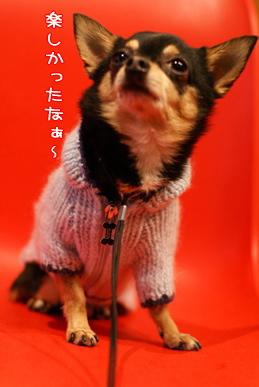 コピー ~ 画像 057