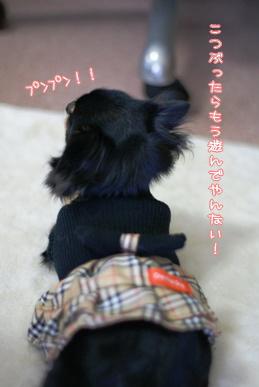 コピー ~ 画像 059
