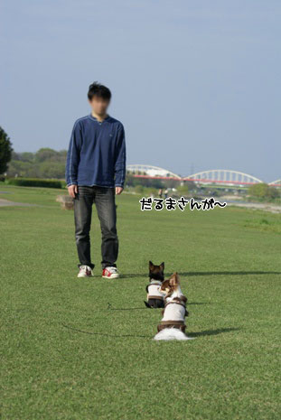 コピー ~ 画像 035