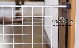 コピー ~ DSC08165