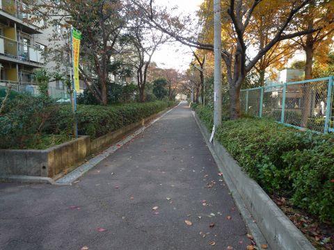 大阪府営東鳥取石田住宅・キラキラ通り2