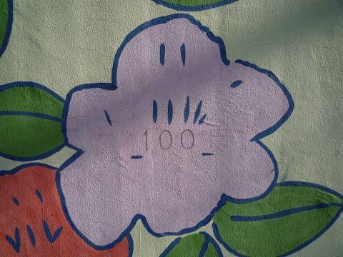 P1040688.jpg