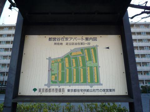 P1050649.jpg
