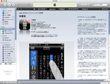 iTunes Store 大辞林