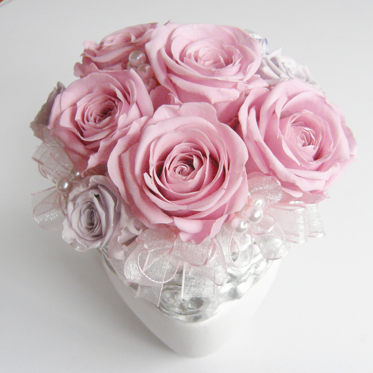 Rose Rose ・・・
