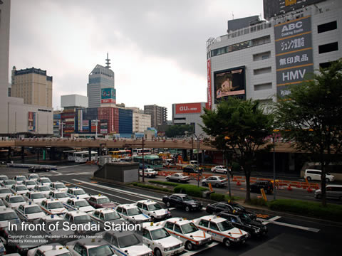 仙台駅前の眺め