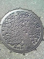 20071006211118