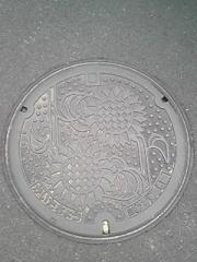 20080203171029