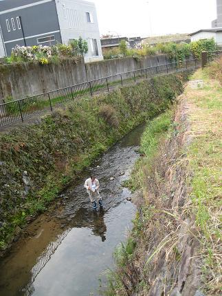 角間川などで水質調査
