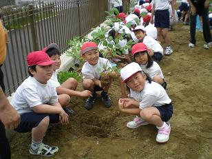 二年生が国際デーで植樹